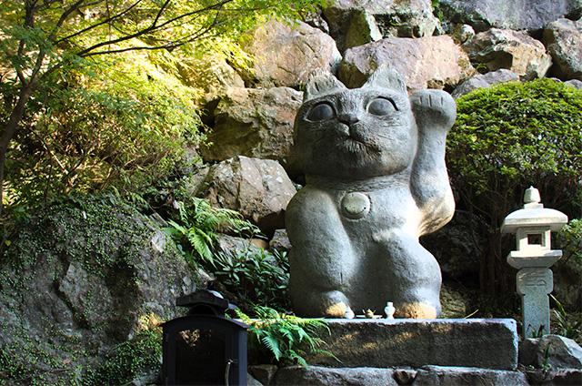 tokushima015.jpg