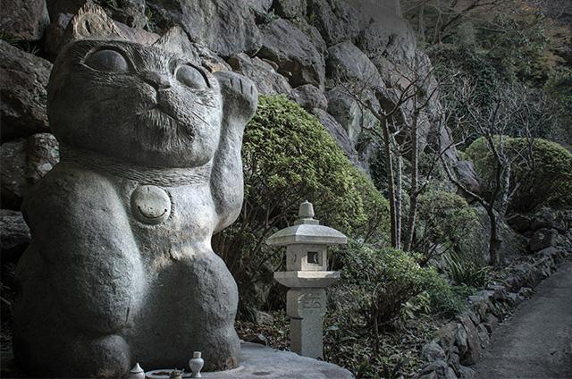 tokushima016.jpg