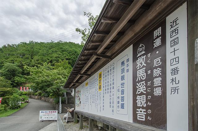 wakayama01.jpg