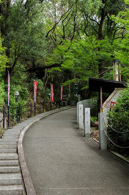 wakayama03.jpg