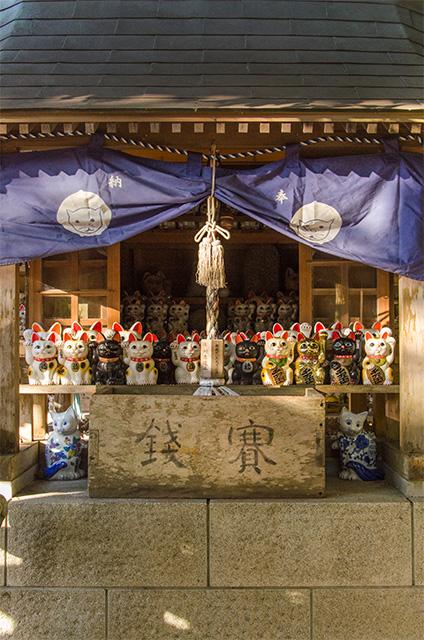 tokushima006.jpg