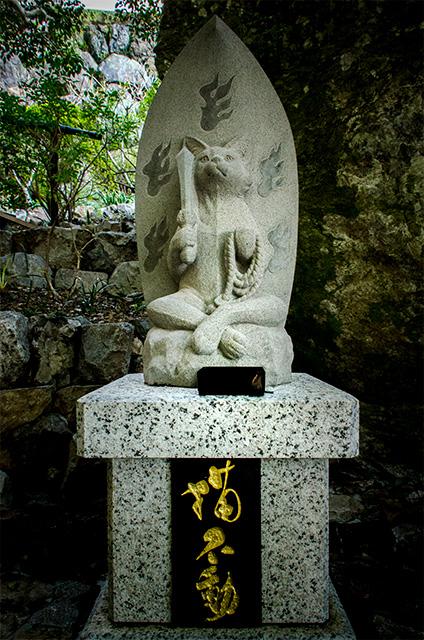tokushima012.jpg